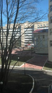 View #2 from my window.
