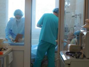 Tranplantation in action.